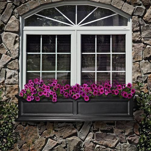 3 kiểu cửa sổ cần tránh