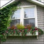 Hít thở không khí trong lành với cửa nhựa lõi thép 3A Window